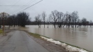 Chatham-Kent Mayor Randy Hope has requested a voluntary evacuation of the community of Thamesville, Ont. (Lower Thames Conservation Authority)