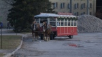 The horse drawn carriage was still running despite other events being cancelled at the Winterloo festival on Feb. 25, 2018 (CTV Kitchener)