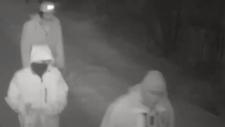 Three vandalism suspects captured on surveillance cameras in Orillia (photo courtesy of Orillia OPP)