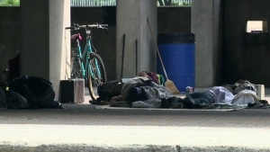 CTV Montreal: New homeless census
