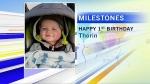 Milestones-feb-28