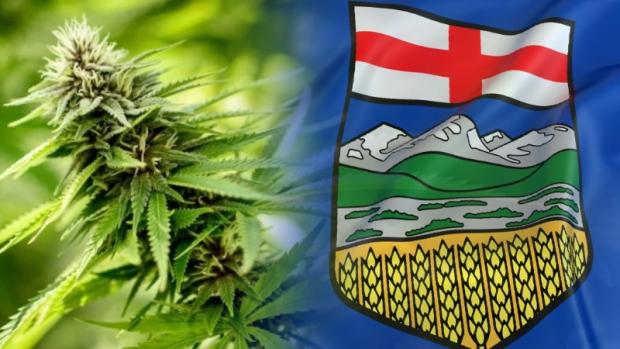 Alberta marijuana