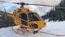 North Shore Rescue performs long-line rescue