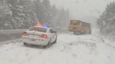 school bus slides off road