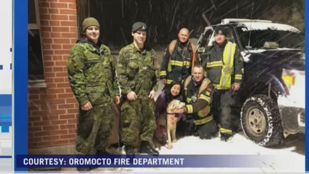 Sherlock was found safe and sound after he had got loose along the Trans-Canada Highway near Oromocto, N.B. (Courtesy: Oromocto Fire Department)