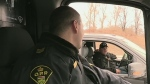 OPP crackdown on distracted drivers