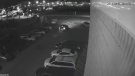 Security camera footage shows a suspect taking off in a luxury vehicle stolen from an Oakville dealership.