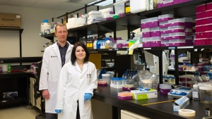 Jeroen De Buck, associate professor, bacteriology, in the Faculty of Veterinary Medicine, and PhD student Marija Drikic have developed a quick and portable way to test humans and animals for different types of chronic and infectious diseases. (University of Calgary, Riley Brandt)