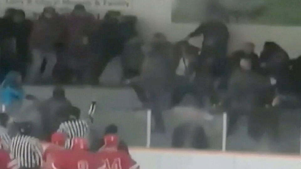 Players and referees watch fans fight at an arena in Turtleford, Sask., in this image from video.