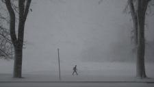 Winter storm hits Maritimes