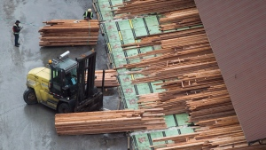 Workers sort and move lumber at the Delta Cedar Sawmill in Delta, B.C., on Friday January 6, 2017. The American government hit the Canadian forestry industry with more duties late Tuesday as it upheld counterveiling duties on Canadian newsprint. (THE CANADIAN PRESS/Darryl Dyck)