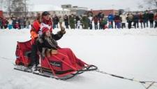 Iditarod champion Mitch Seavey