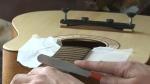 R Guitars - Stev Rozitis