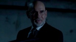Mitch Pileggi met the love of his life on set