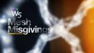 W5: Mesh Misgivings