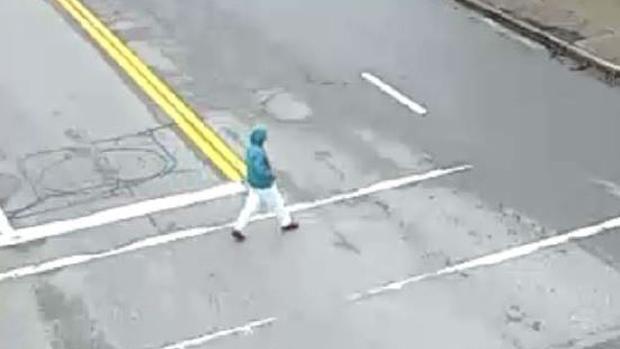Surrey Rcmp Release Images Of Injured Pedestrian