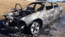 A car was destroyed by fire near the intersection of Crowsfoot and Cox Creek roads in Woolwich Township on Saturday, March 17, 2018. (Terry Kelly / CTV Kitchener)