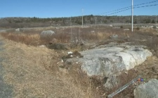 RCMP were called to a single vehicle mishap Sunday morning, after a vehicle hit a boulder near Peggy's Cove.