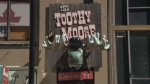 Police are searching for a suspect following a stabbing at the Toothy Moose in downtown Halifax.