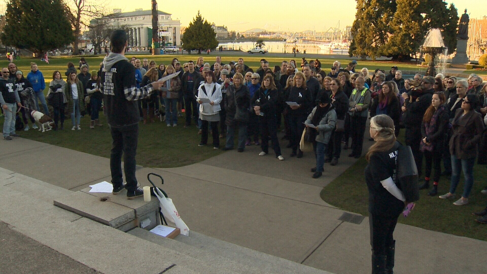 Dozens of people wearing 'Justice for Teddy' shirts gathered at the BC Legislature on Sunday for the candlelight vigil. Mar. 18, 2018 (CTV Vancouver Island)