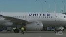 United Airlines putting pet cargo on hold
