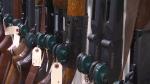 firearm laws