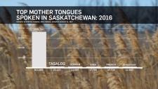 Top mother tongues spoken in Saskatchewan: 2016