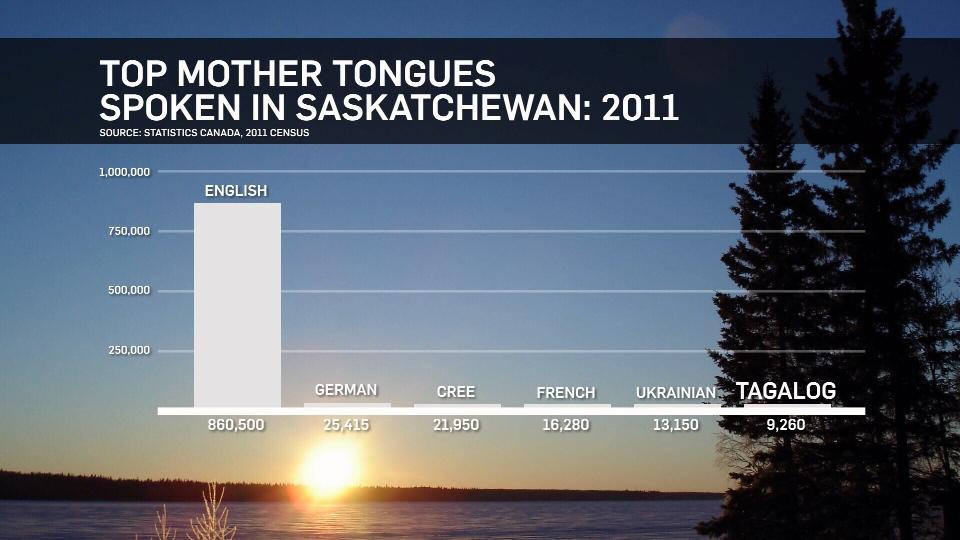 Top mother tongues spoken in Saskatchewan: 2011