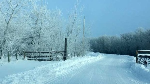 A snowy driveway out in Ebb and Flow, Manitoba. Photo by Kathleen Desjarlais.