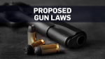 4 things to know about the Liberal's new gun bill
