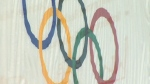 Council mulls Olympic plebiscite