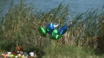 Details of child's drowning death released