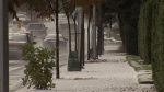 Rain, hail and snow: Everything is on the table as a cold front sweeps through the South Coast, according to Environment Canada.