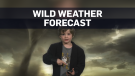 weather kid