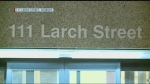 Larch st