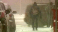 Winter storm hits southern Sask.