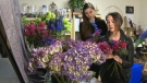 Flower preparation for Michelle Obama in Calgary
