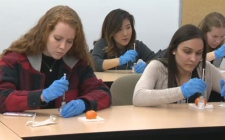 Students inject water into oranges as a simulation to learn the technique of injecting naloxone to bring overdoses opiate users back from the brink of death.
