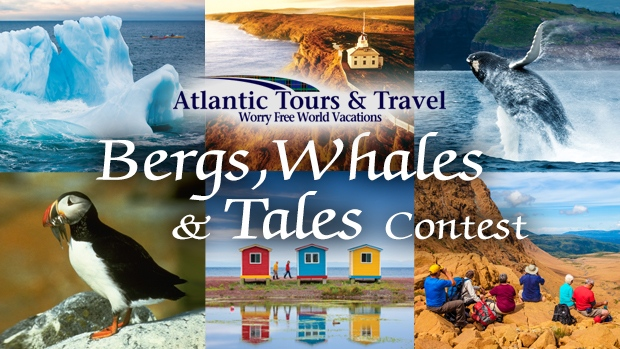 Bergs, Whales, and Tales