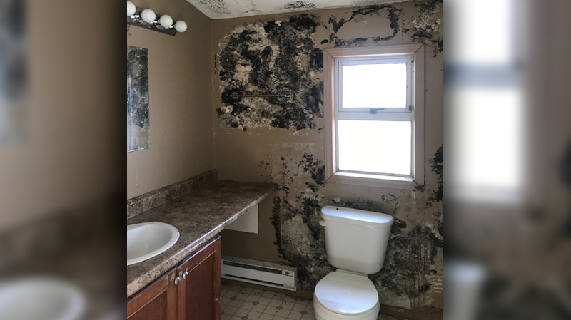 A four-bedroom rental home that's listed for $1,600 a month in Abbotsford, B.C. is plagued with mould and other problems.