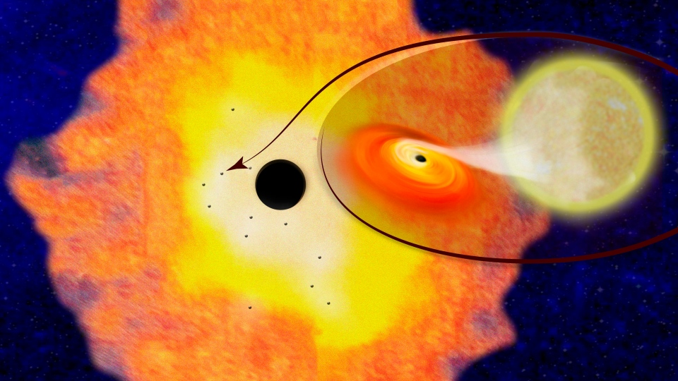 This illustration provided by Columbia University shows the supermassive black hole Sagittarius A, located at the center of the Milky Way Galaxy, surrounded by a cloud of dust and gas within which are 12 smaller black holes, and a closeup of one of the systems.(Columbia University via AP)