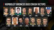 Humboldt crash victims