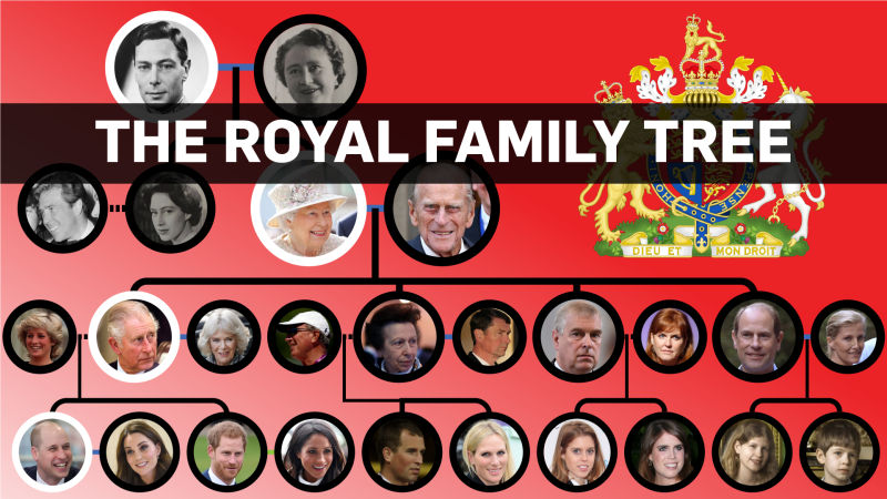 Royal Family Tree (CTVNews.ca / Nick Kirmse)