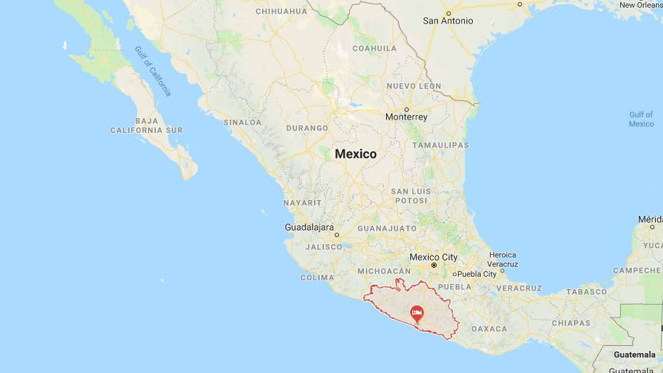 101 sea turtles found dead on Mexican beaches | CTV News