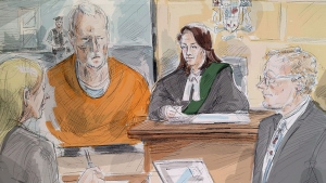In this artist's sketch, alleged serial killer BruceMcArthur makes an appearance via video in a Toronto courtroom, Wednesday, April 11, 2018. From left, lawyer Samantha Saunders, part of McArthur's defence team, McArthur, Justice Wendy Agnew and Crown Michael Cantlon are shown. THE CANADIAN PRESS/Alexandra Newbould