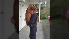 red coonhound stolen victoria
