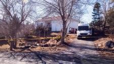 Nicholas Butcher murder trial