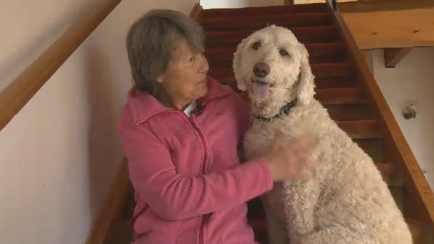 Libby Edwards sits with her five-year-old golden doodle Peggy.