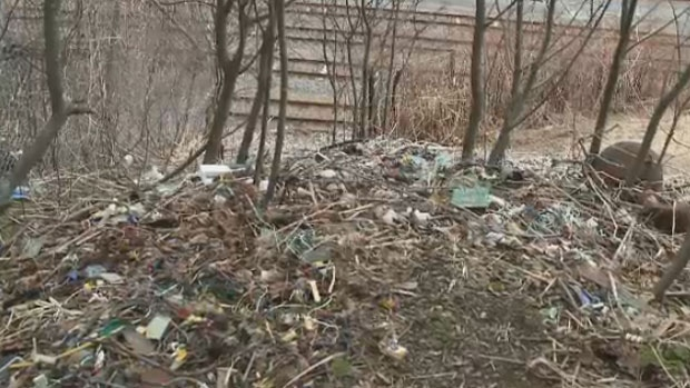 Wires, circuit boards and plastic have been dumped on a hill between Crown Street and the tracks below in Saint John, N.B.