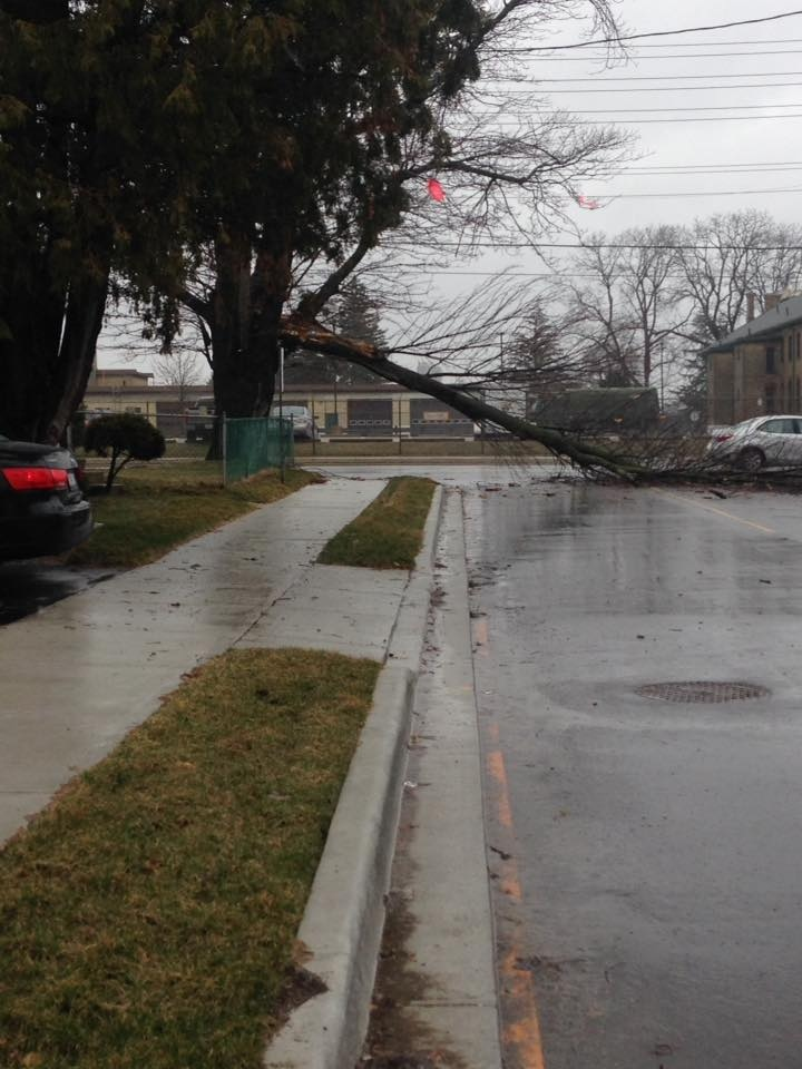 Crews in London were responding to downed hydro lines and trees.